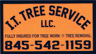 Ian Taliaferro Tree Service 845-542-1159