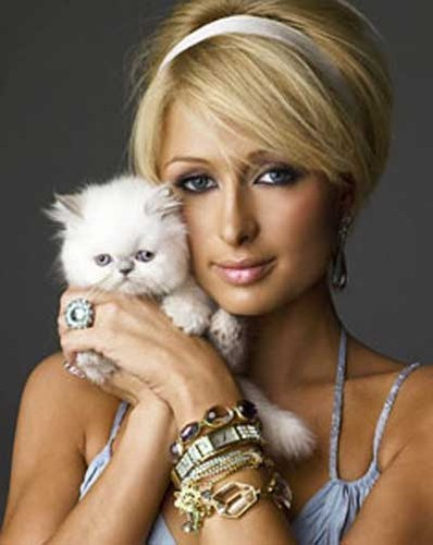 paris hilton. paris hilton singer and model
