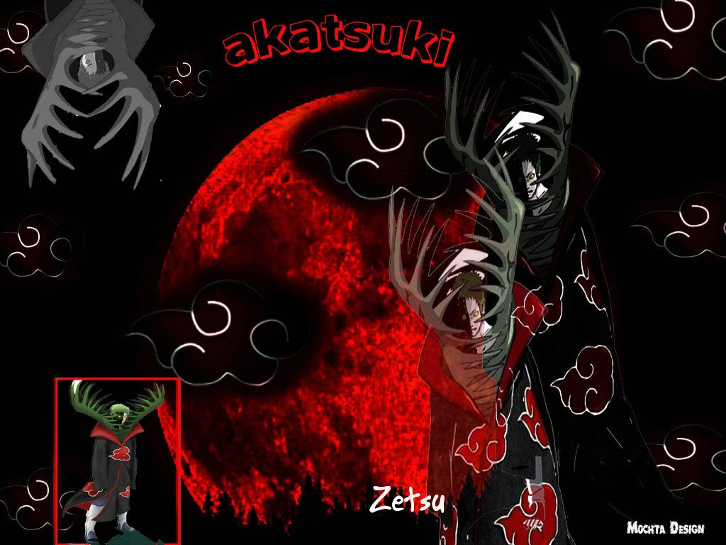 http://2.bp.blogspot.com/-H6xUkj5ndP4/TkgpE2QAsbI/AAAAAAAAAD8/bc7rM1MwOrg/s1600/Zetsu-Akatsuki-Wallpaper.jpg