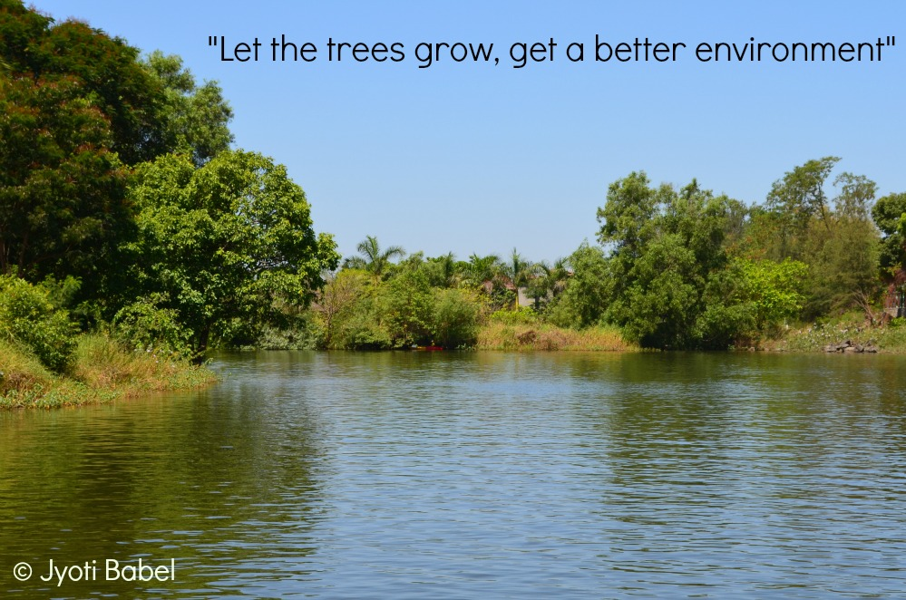 Quotes About Green Trees Images