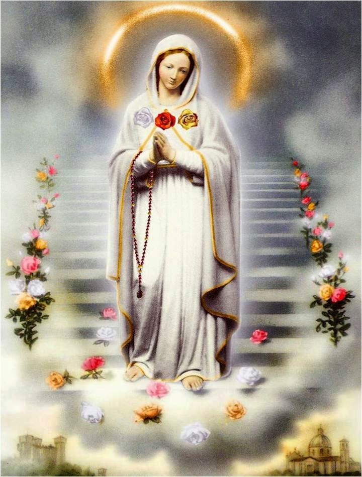 Imágenes de la Virgen de Guadalupe con rosas - Imagenes De La Virgen Con Rosas