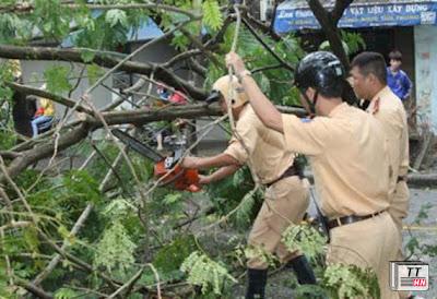 Cảnh sát giao thông dọn cây đổ