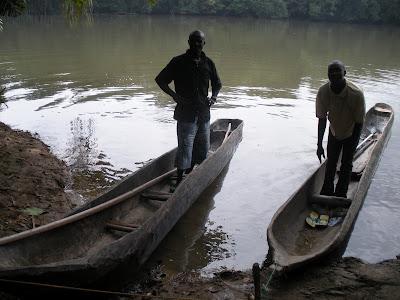 Dugout canoes at Tiwai Island, Sierra Leone