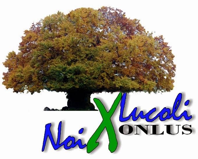 Blog della associazione Noi x Lucoli Onlus