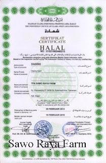 Sawo Raya Farm HALAL 100%