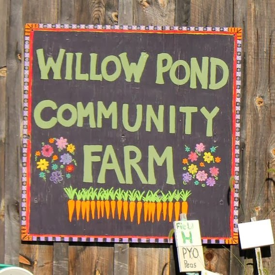 Willow Pond Community Farm will be here for ART ON UNION