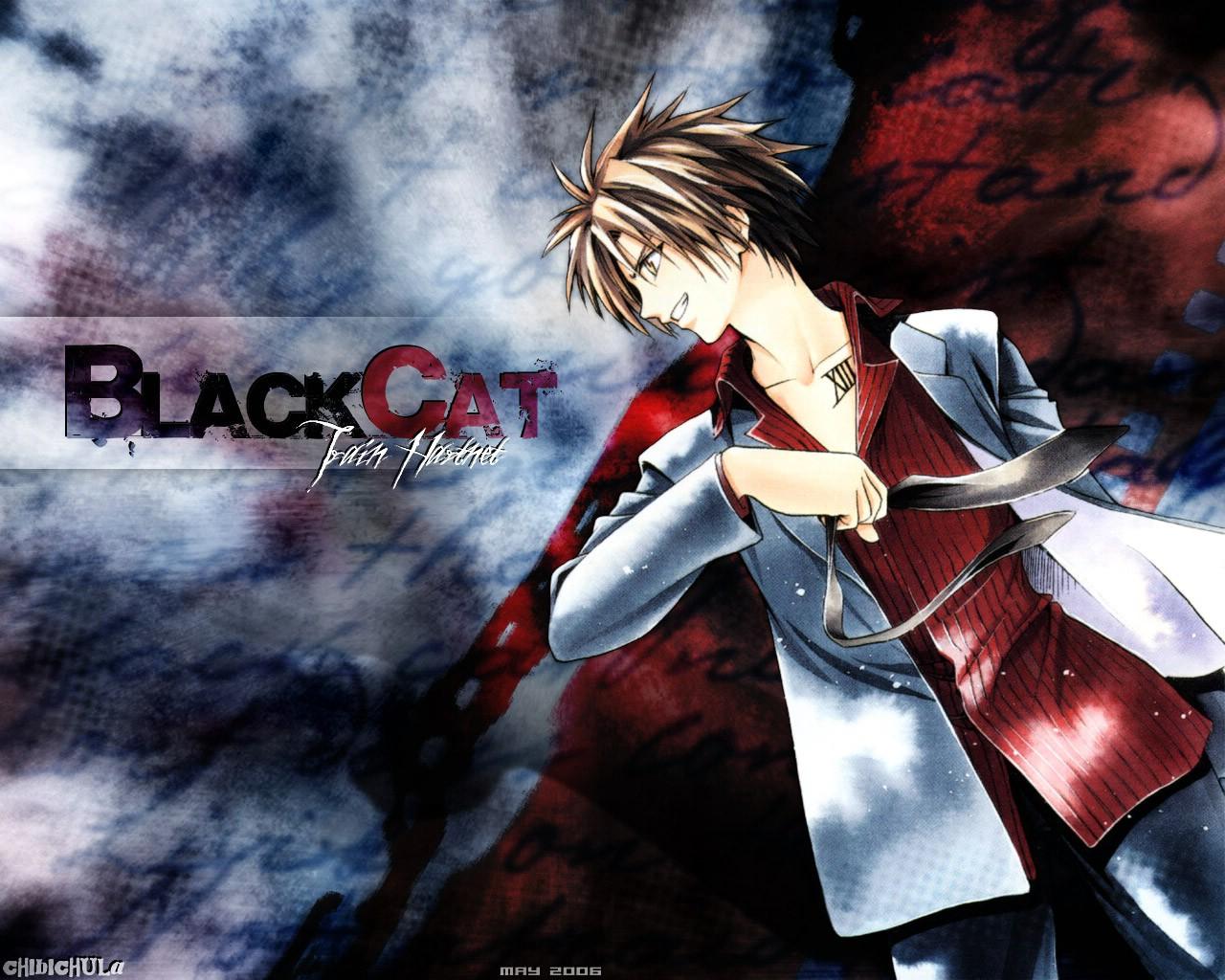 Train Black Cat - Cats Types