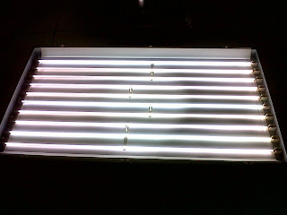 Lampu CCFL Sharp Aquos