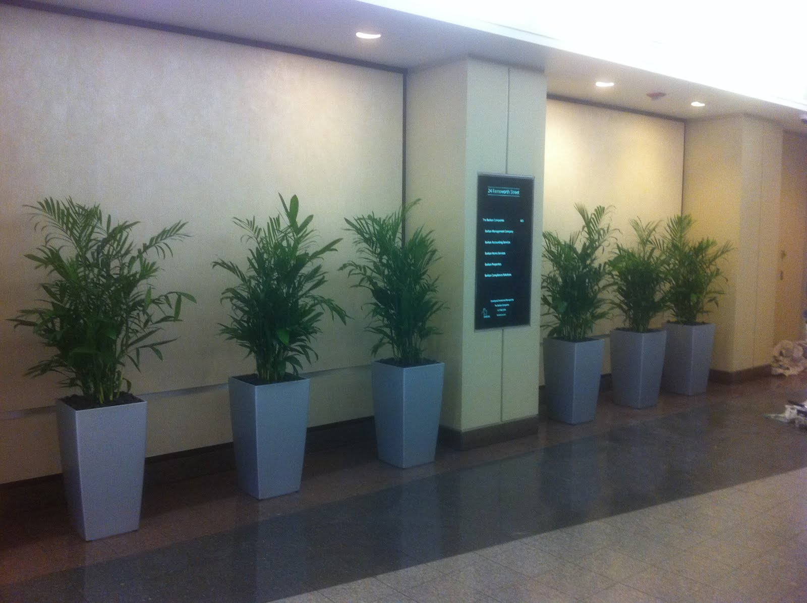 PDI Plants Blog: Repetitive use of green indoor plant design in ...