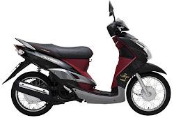 Vietnam und Motorräder