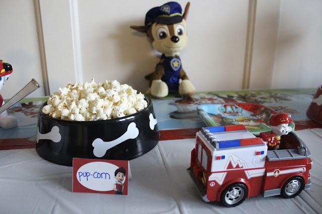 Paw Patrol Birthday Party Food Ideas