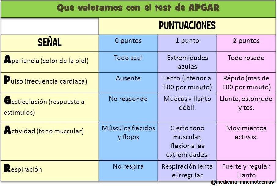 bot 2 scoring manual pdf
