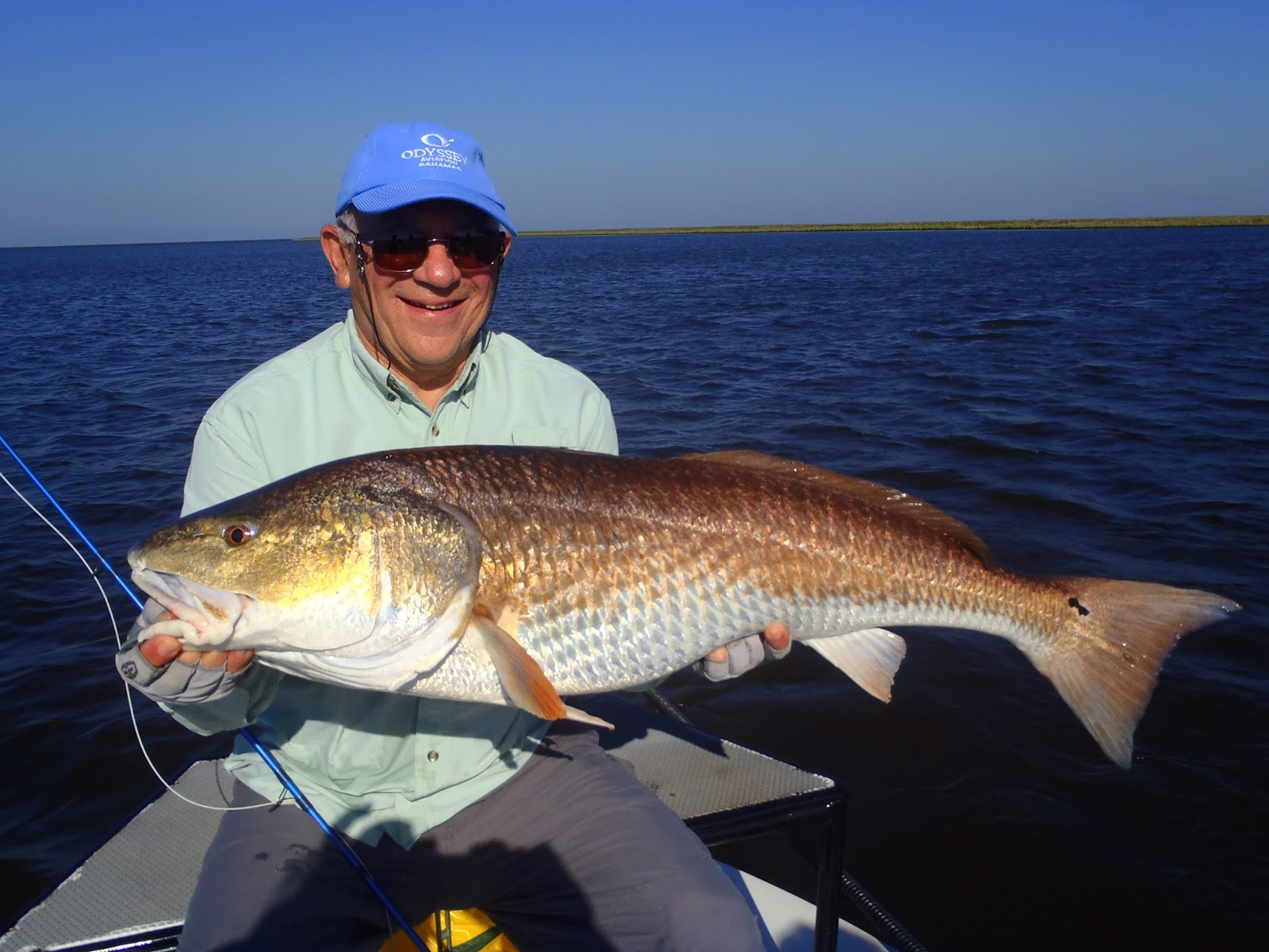 Redfishing louisiana a guides journey louisiana redfish for Louisiana redfish fly fishing
