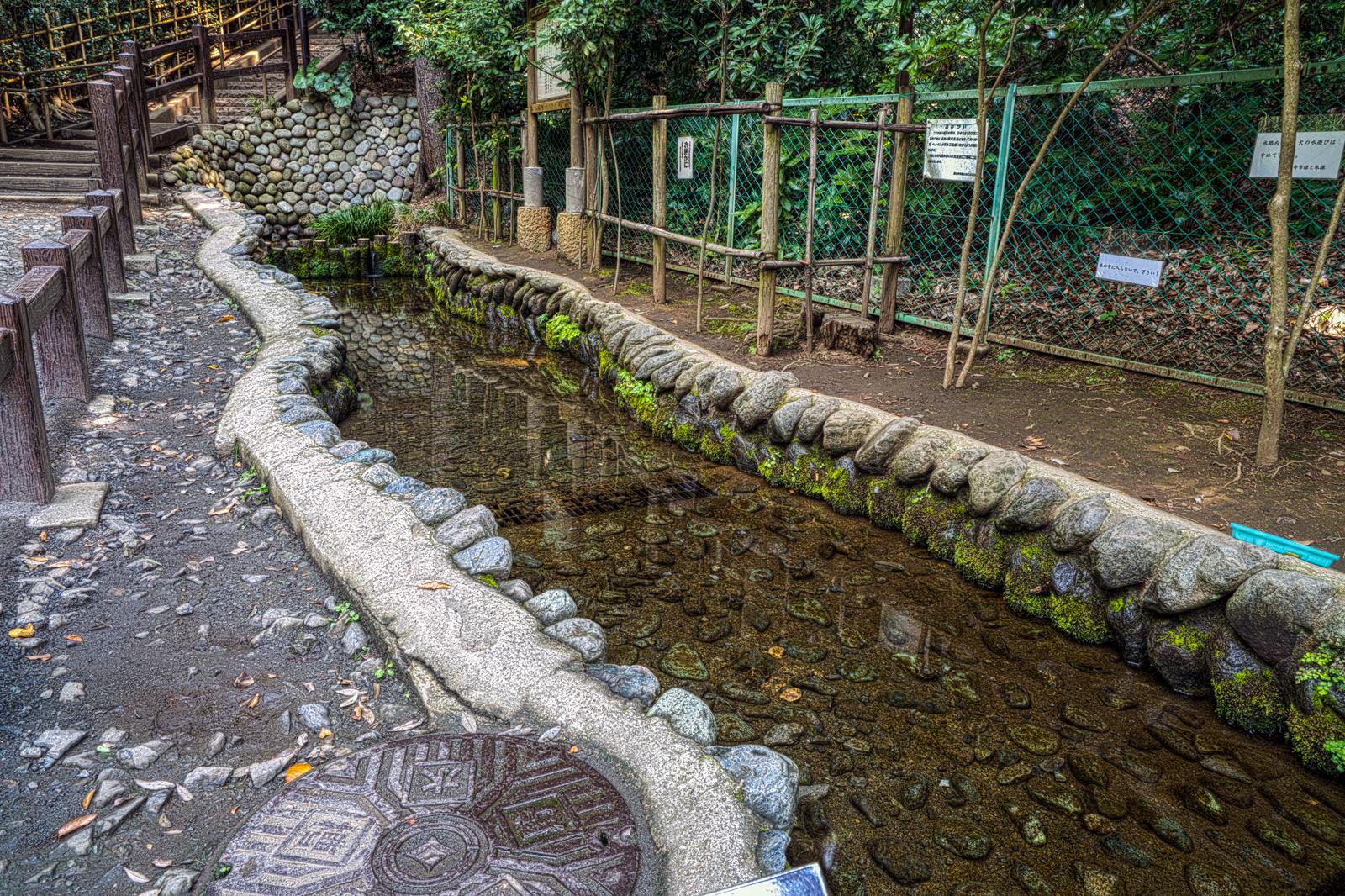 全国名水百選、お鷹の道・湧水群の写真