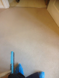 carpet cleaning cambridge