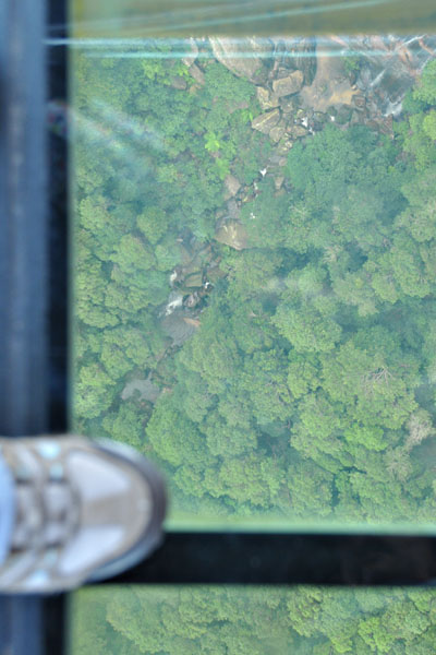 scenic world skywalk glass bottom