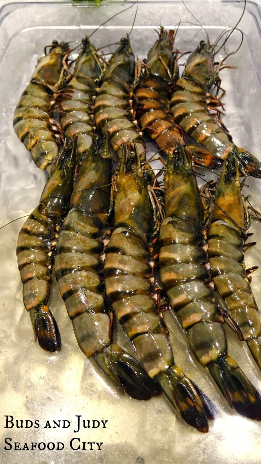 Seafood City. Seafood Restaurant in Cebu City, king prawns