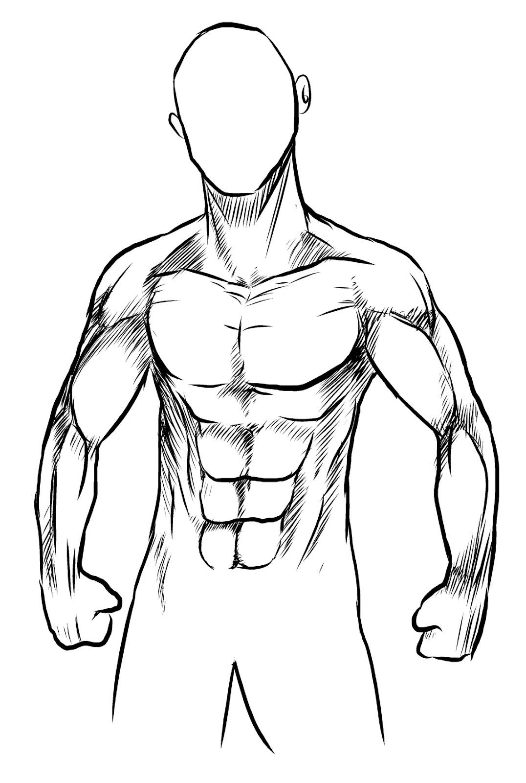 Fantástico Imagen Del Esqueleto Humano Marcado Foto - Anatomía de ...