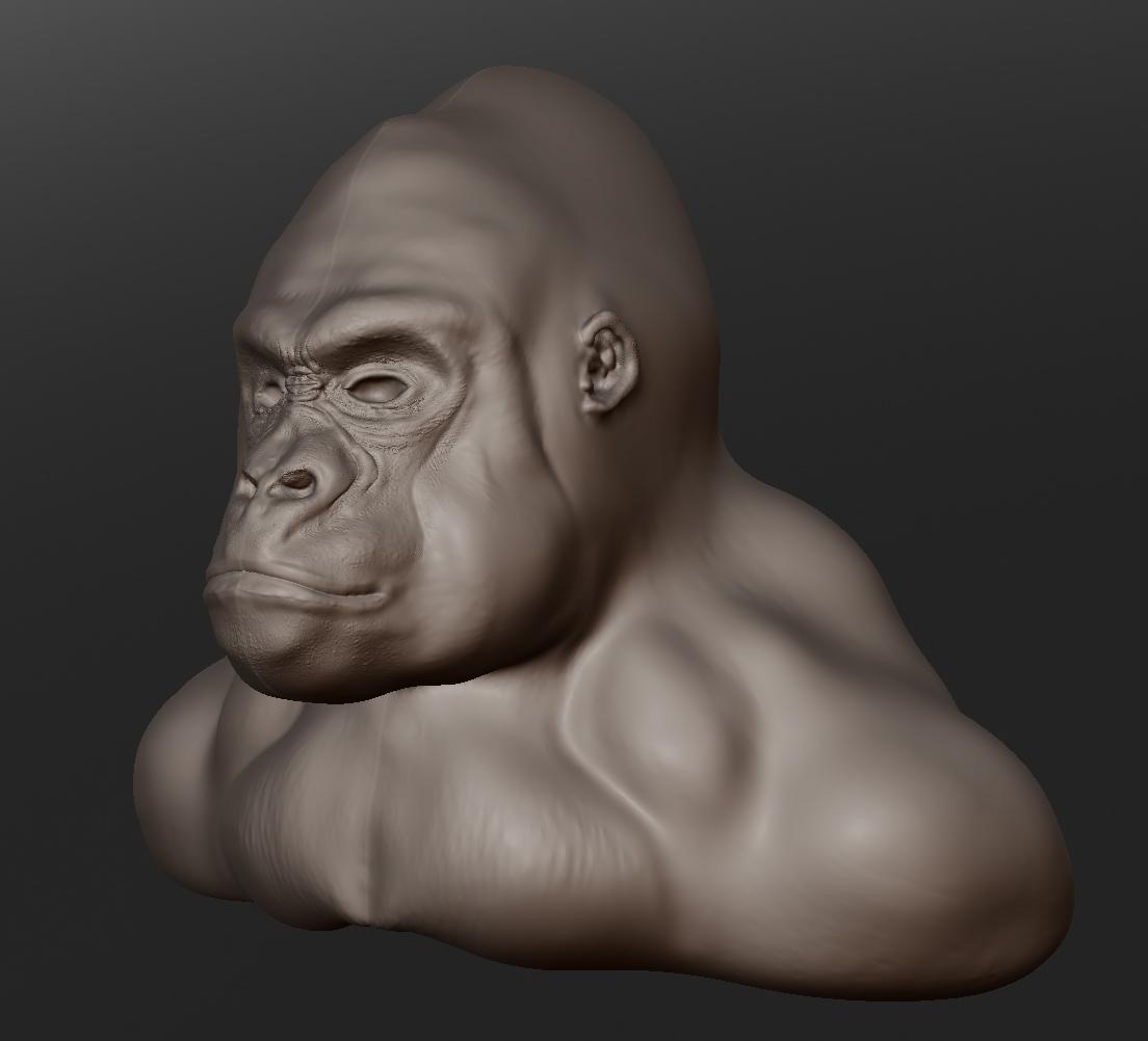Projects Computers Sculptris Head Design