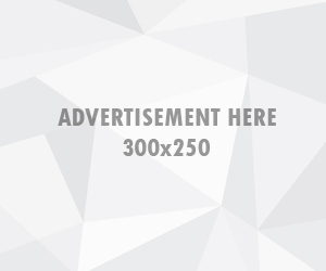 Ads 300x250