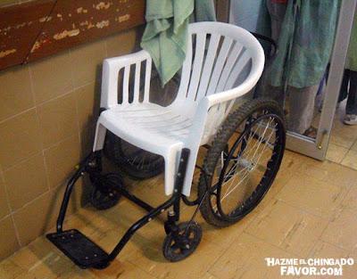 Pretty little problem seguimos innovando - Sillas de ruedas para perros baratas ...