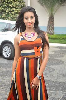 Sanjana beautiful glamors in a floor length tight sleeveless es dress high purple heels