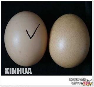 Tips Trik Cara Membuat Telur Palsu