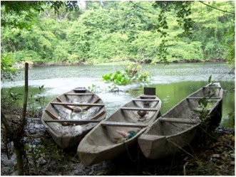 dugout canoes in Baures region, upper Amazon, Bolivia