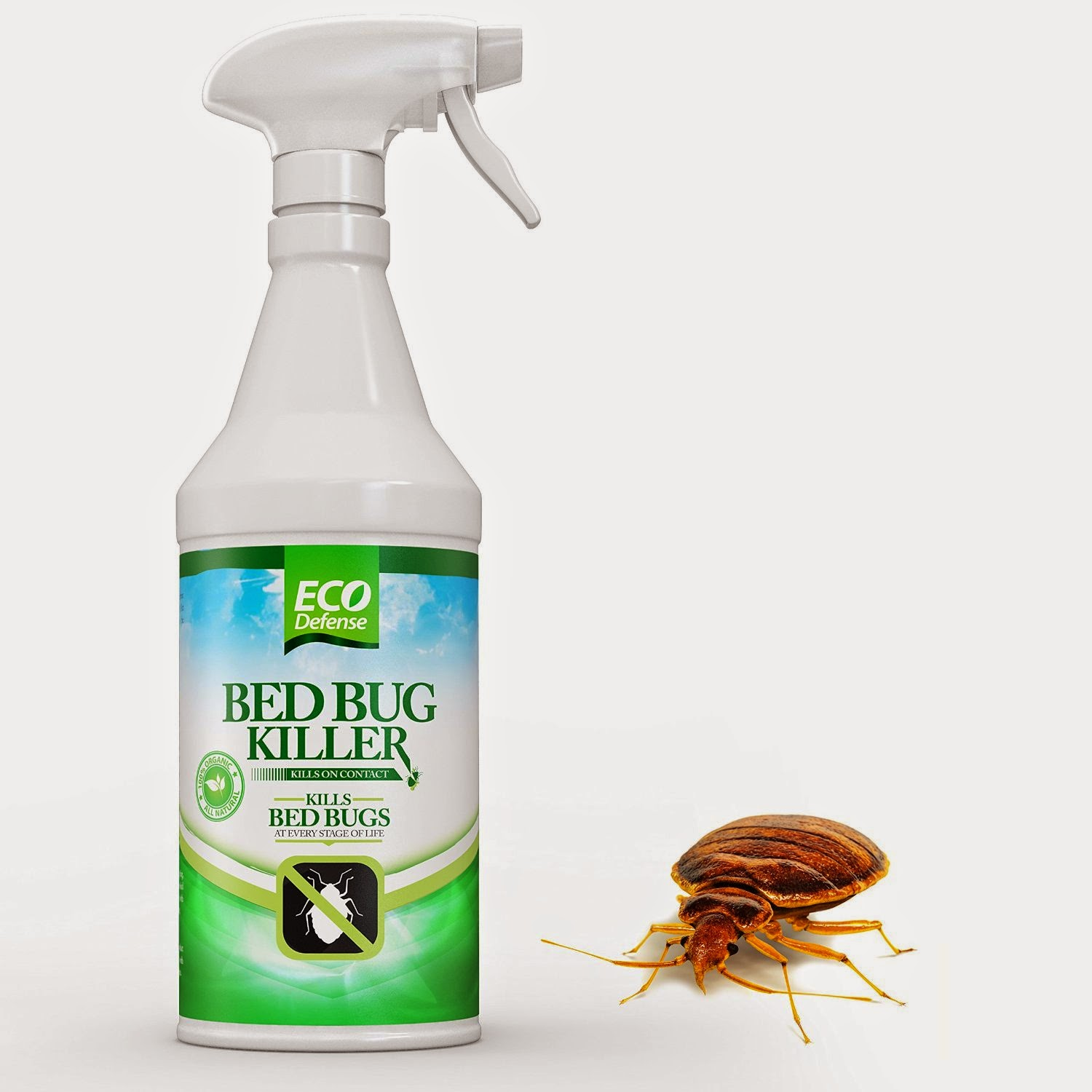 Eco Defense Bed Bug Killer Reviews