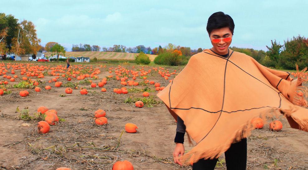 http://www.ziondejano.blogspot.com/2014/10/pumpkin.html