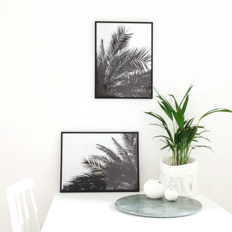 Black and White Palm Tree Prints
