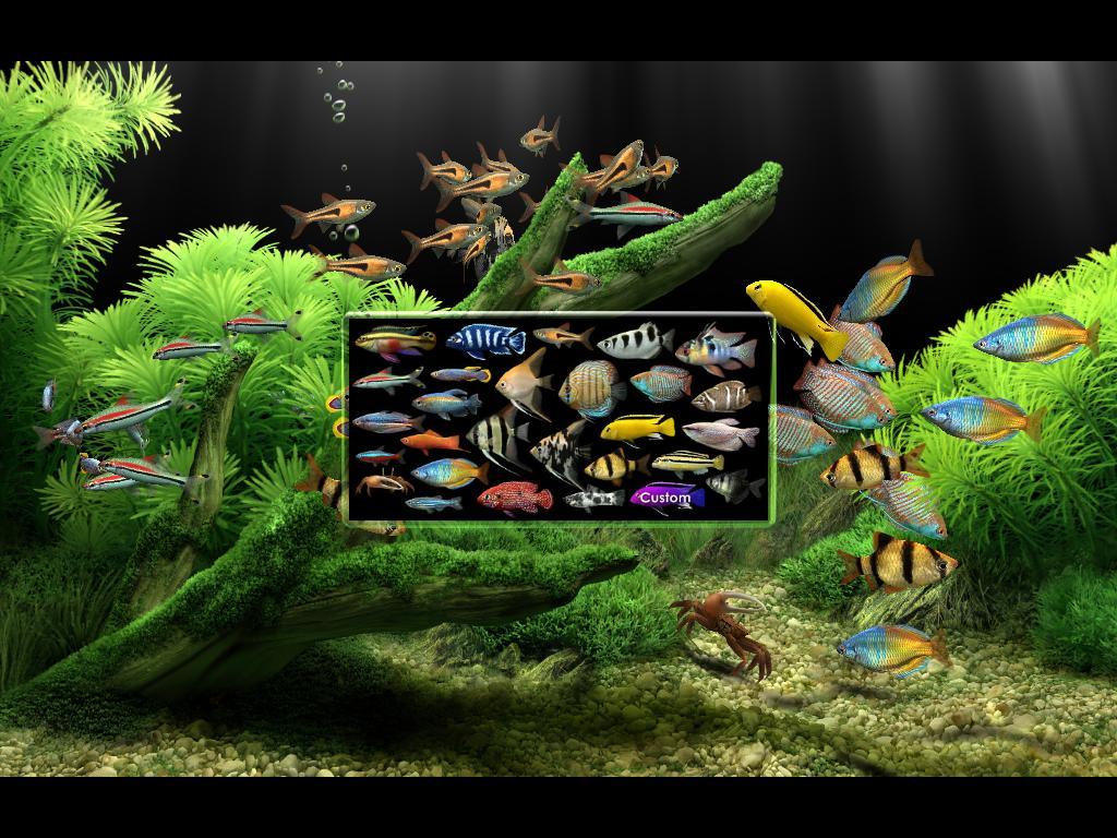 Dream Aquarium Screen Saver Virtual Aquarium Active