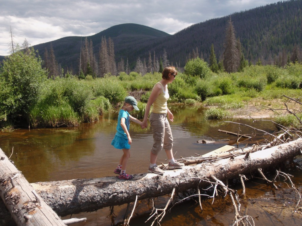 Fishing for brook trout on the south fork of the williams for Fishing in williams az