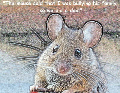 Mouse - a talking mouse