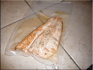 vacuum sealed grilled salmon
