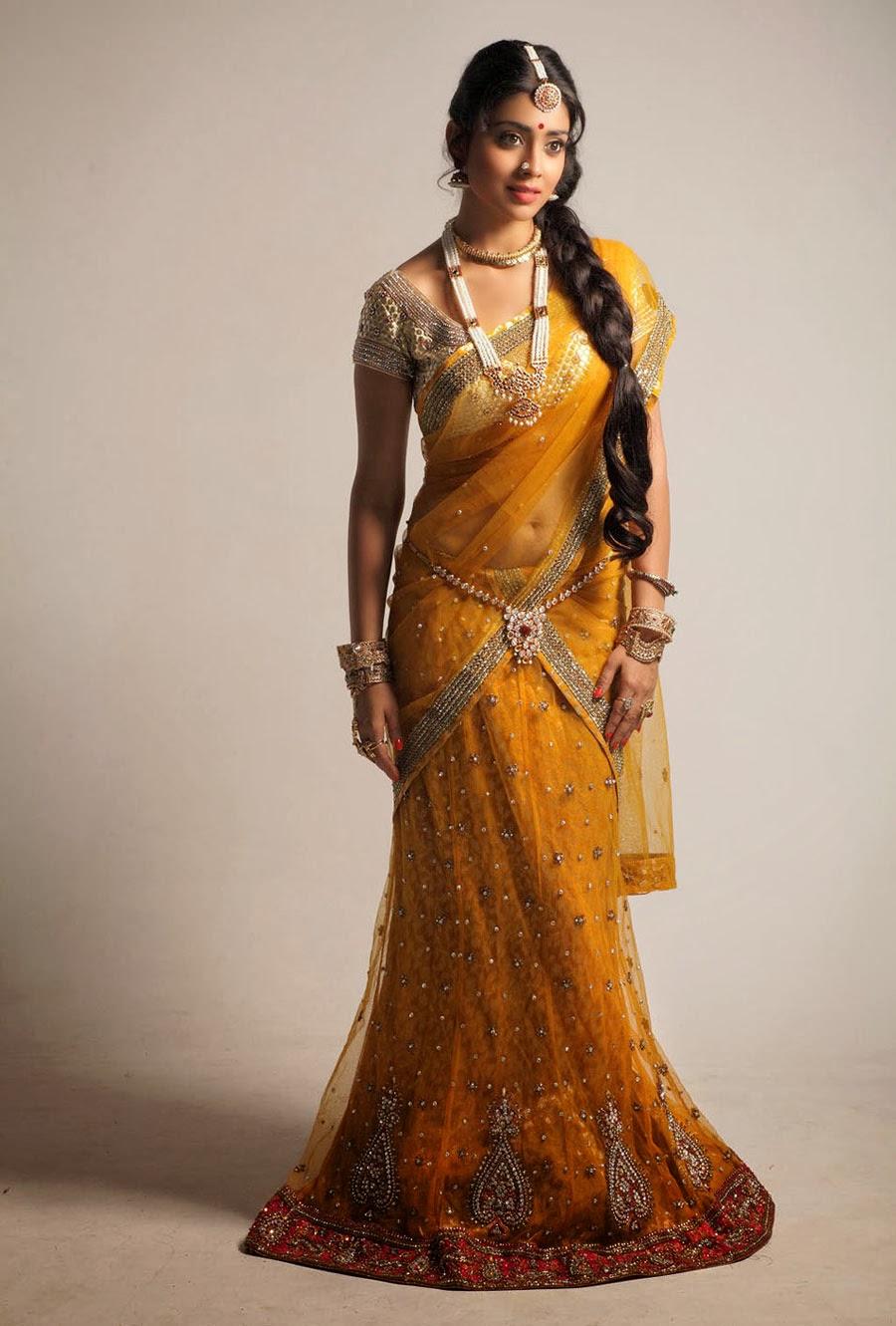 Shriya Saran In Beautiful Saree HD Wallpaper Free