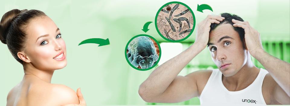 UNGEX Pty Ltd - Universal Green Experts SB Mite Solution