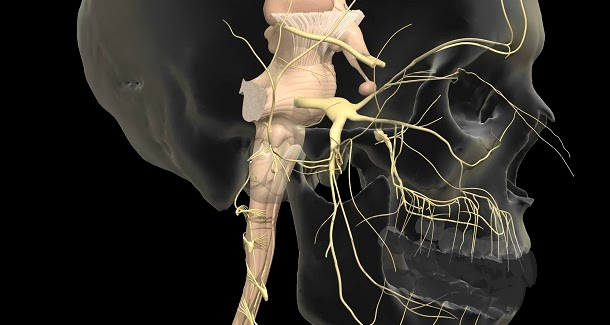 Neuralgia do trigémio