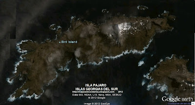 Isla Pájaro, ISLAS GEORGIAS DEL SUR Y SANDWICH DEL SUR , Google Earth 2012