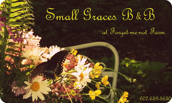 Small Graces B&amp;B