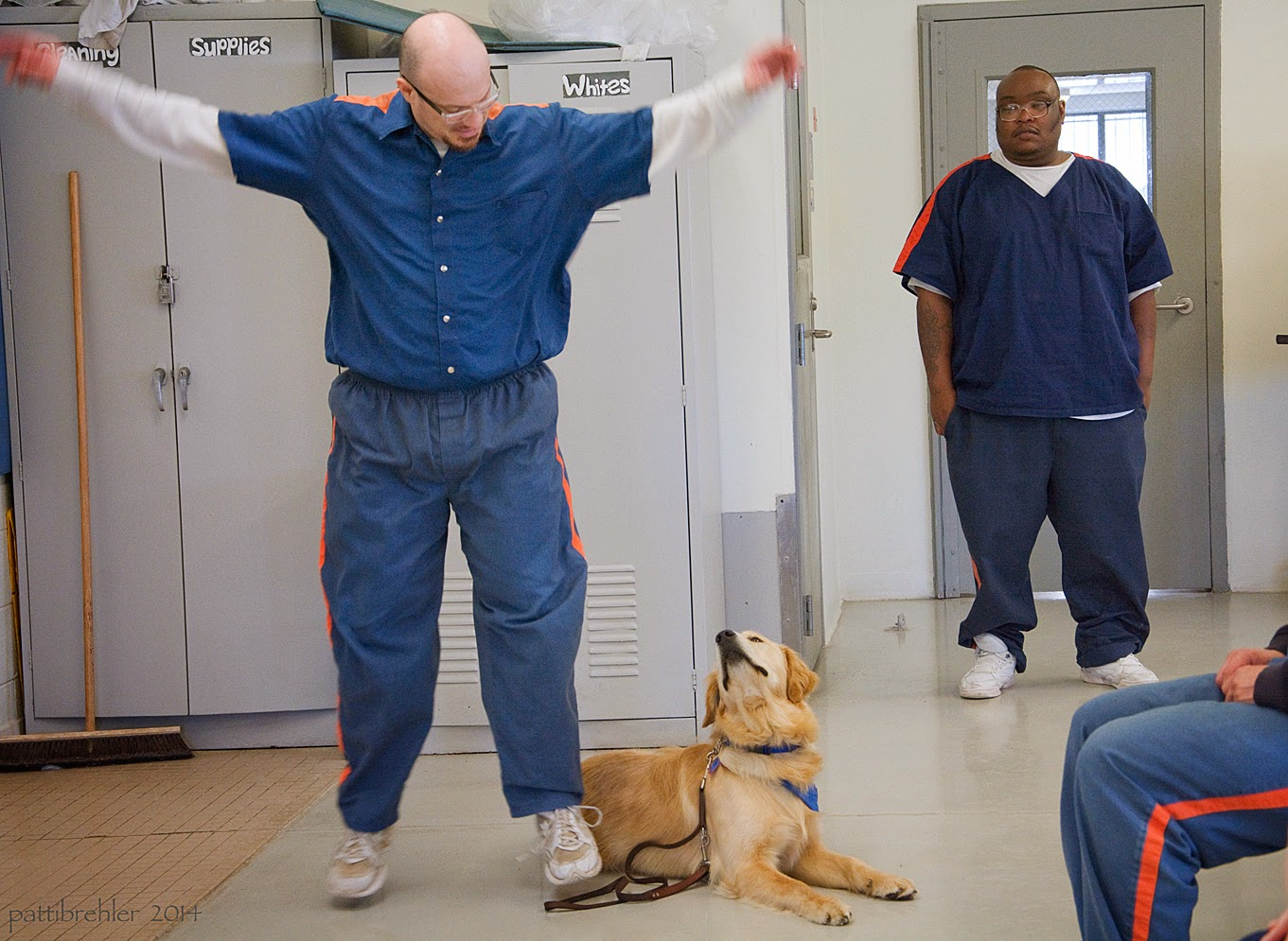 The man that was holding the leash of the golden retriever has set the leash on the floor and is now doing jumping jacks. The golden is lying down and looking up at the man. There is an african american man dressed in the prison blue uniform standing in the background watching. Someone's knees are just visible to the right side of the photo.