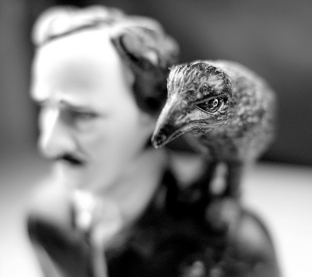 the raven and the writer