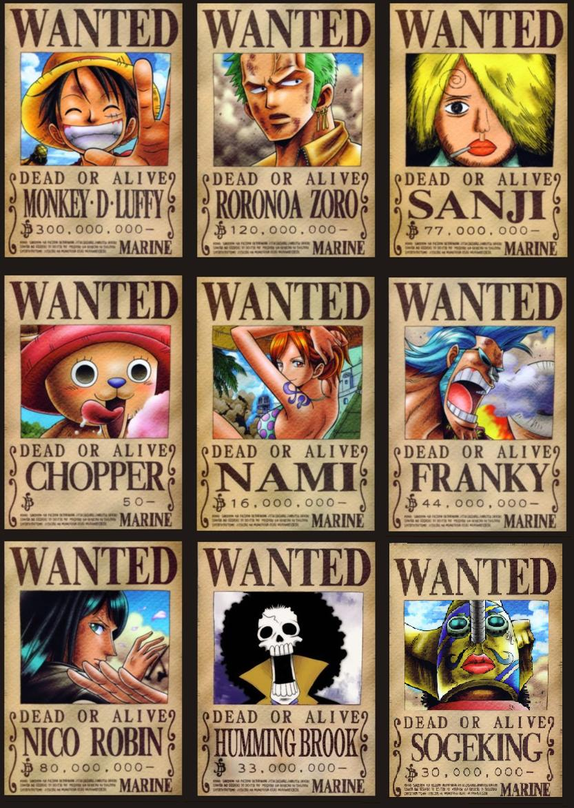 one piece wanted poster new world. Black Bedroom Furniture Sets. Home Design Ideas