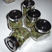 jak wykorzystać suszone zioła