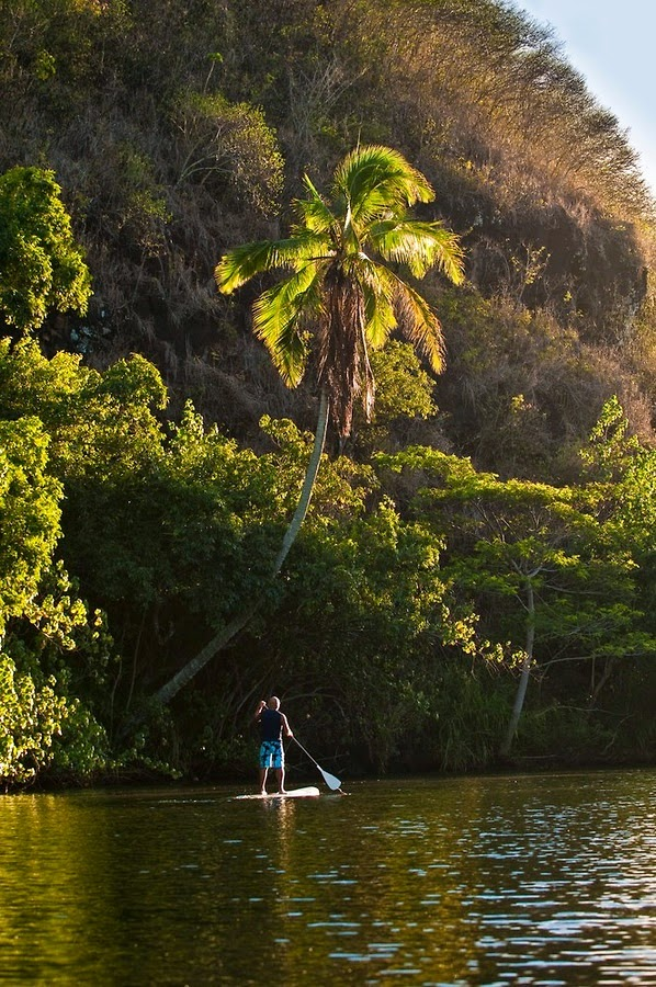 Wailua_River_State_Park