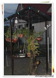 Rumah orkid ni guna besi wrought iron pastu dia tambah design bunga