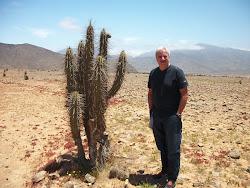 El Desierto Chileno