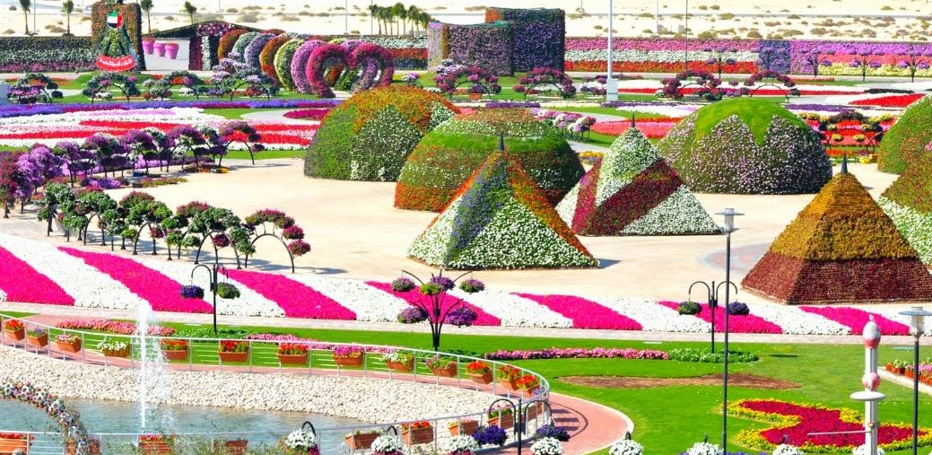 AMAZING PIKCHAZ: ATTRACTIONS: DUBAI'S MIRACLE GARDEN - WORLD'S ...