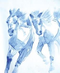 """""""Twin Foals"""""""
