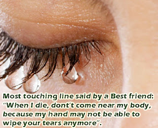 Popular Friendship Quotes